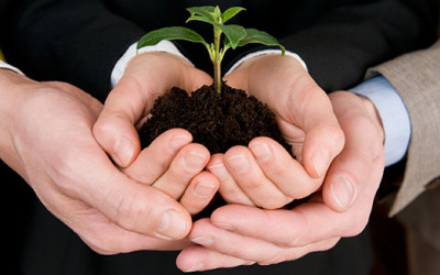 Increase Your Green: People, Planet, and Profits