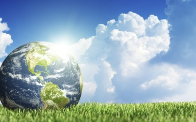 Schools Can (and Will) Create a Green, Sustainable Future