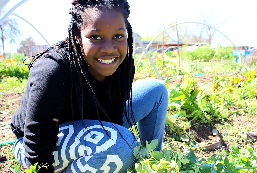 Cultivating Change: EcoRise Students Aim Beyond Classrooms and Gardens