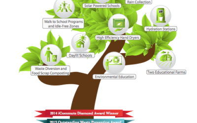 MAKING THE SHIFT FROM GREEN OBSERVERS TO ENVIRONMENTAL STEWARDS