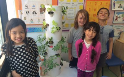 Children's Environmental Literacy Foundation: Preparing Today's Students for a Complex Future