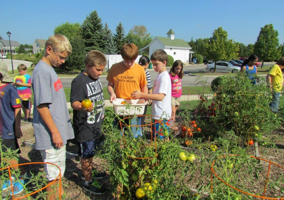 Growing Green Students in the Sustainable Schoolyard