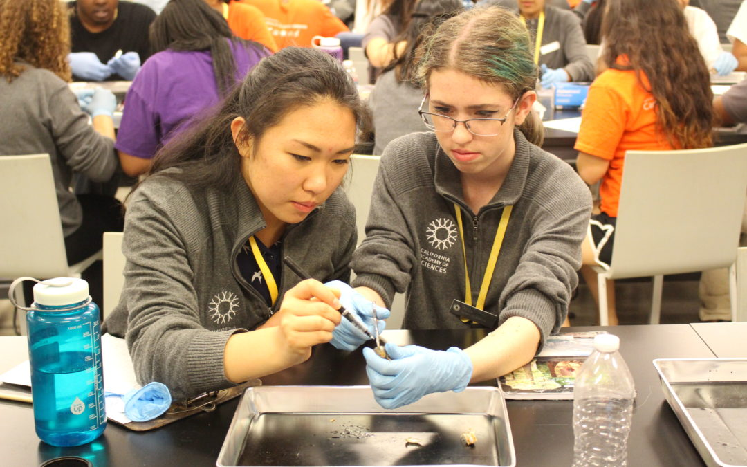 Science Action Clubs Use Citizen Science to Engage Students in STEM