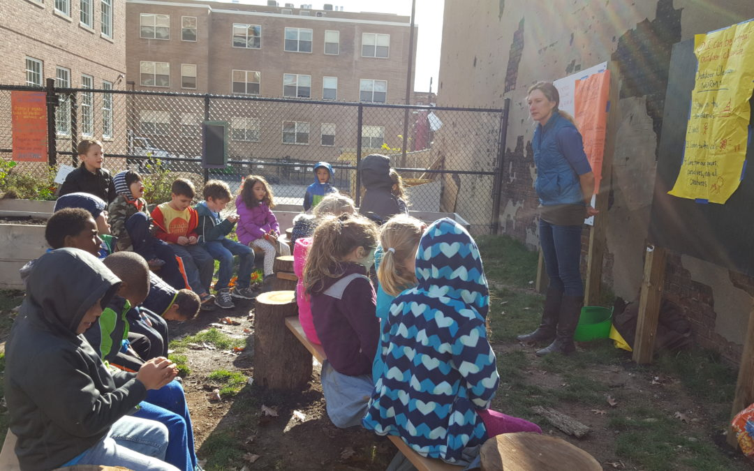 Using the Schoolyard for Place-Based Learning: A Close Look at the Lessons Learned by a Sustainable School in Washington DC