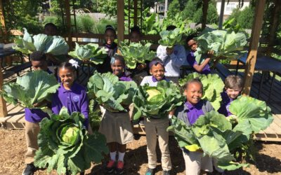 New Hope Christian Academy is Paving the Way for Environmental Education in Memphis