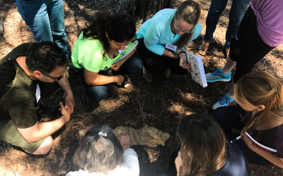 Teacher Professional Learning: Leveraging the Local Environment and Partnerships to Succeed With NGSS