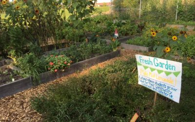 Burlington School Food Project Brings Food- and Garden-Based Learning to Vermont Students