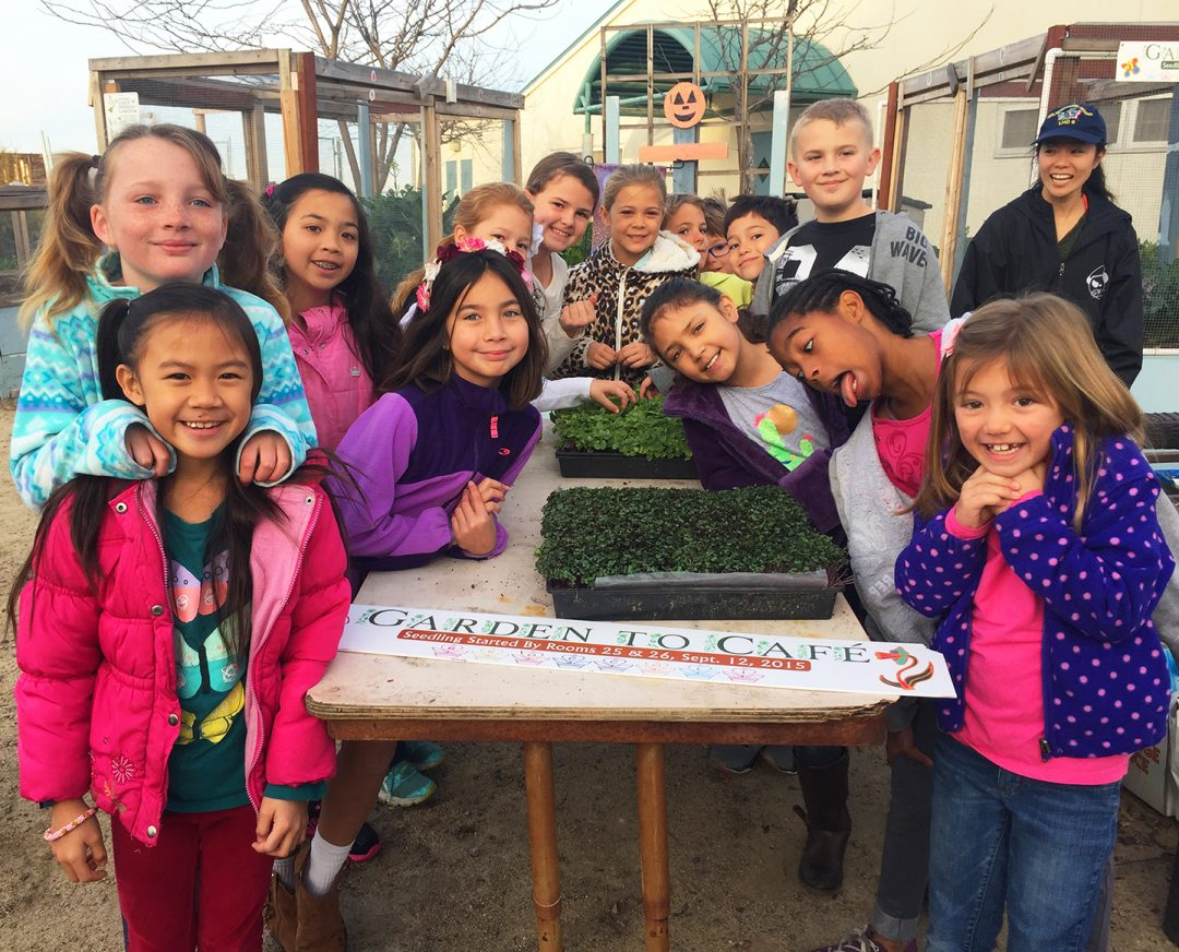 Cultivating Healthy Students Via Farm To School At San Diego Unified