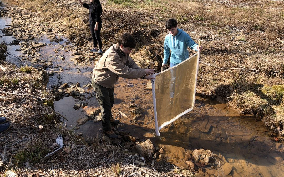 Water, Water, Everywhere – A Look into Students' Study of Water Quality