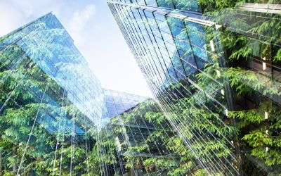 Green Building: Tools for the Future