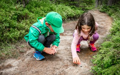 Fun and Educational Outdoor Learning Experiences for Students and Their Families