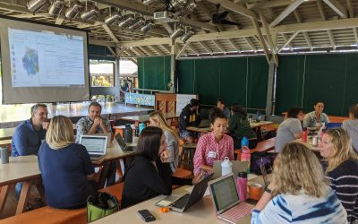 Adaptation in the Time of COVID-19: Making Big Decisions to Ensure Equitable Access to Virtual Learning