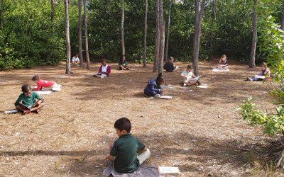 GSNN is #GivingGreenJustice: Meet Pine Jog Elementary School