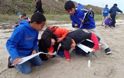 Environmental Education Comes to Life at John D. MacArthur Beach State Park